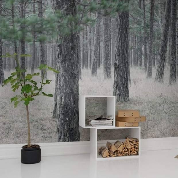 Panoramique sur mesure Pine Forest