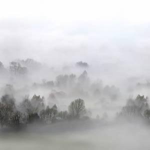 Panoramique sur mesure Morning Fog