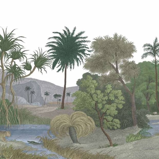 Panoramique sur mesure Jungle Land