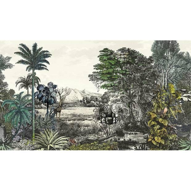 Panoramique Safari Pampas