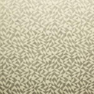 Tissu Engram