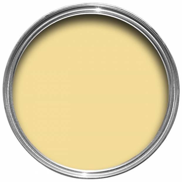 Peinture Dayroom Yellow No 233