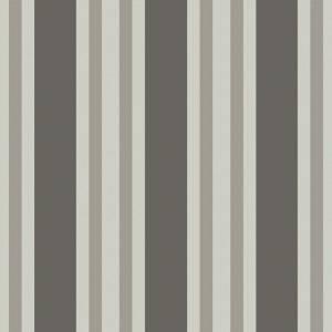 Papier Peint Polo Stripe