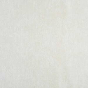 Papier Peint Caractere