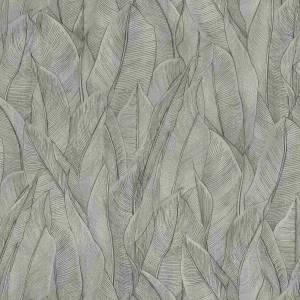 Papier Peint Amazone
