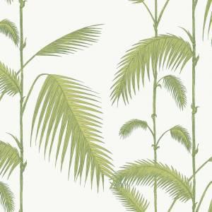 Papier peint Palm