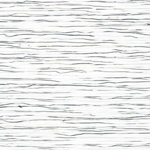 Papier Peint Zephyr