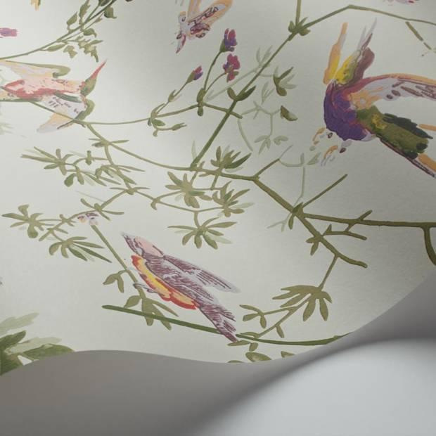 Papier Peint Hummingbirds