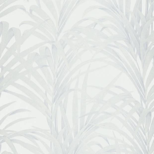 Papier peint Fougère