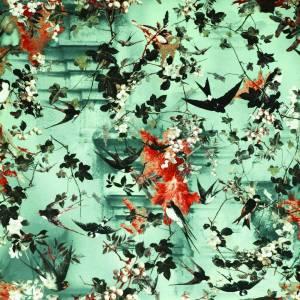 Papier peint Hirondelles