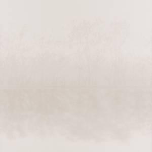 Papier Peint Iris Lanscape
