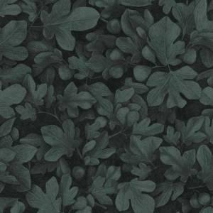 Papier Peint Ficus