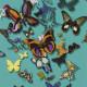 Papier Peint Butterfly Parade