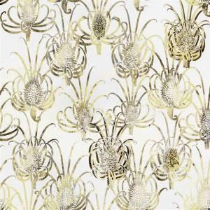 Papier Peint Les Centaurees