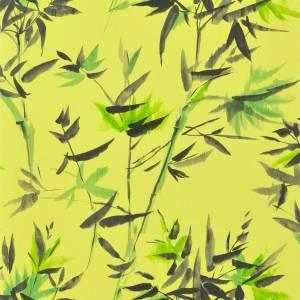 Papier Peint Bamboo