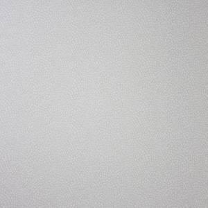 Papier peint Oriole
